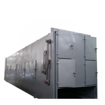 Food Drying Equipment Continuous Mesh Belt Seafood Air Dryer